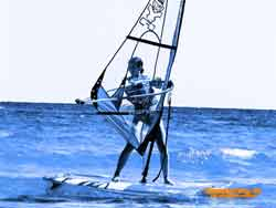 Windsurfer Wallpapers