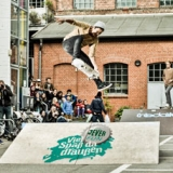 Surf&Skate Festival presented by Jever Fun. Hamburg 2014.  Foto: Christoph Leib